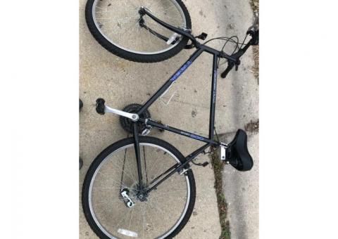 Adult Trek Bike