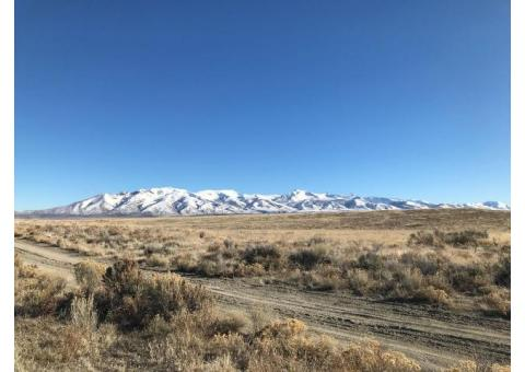 40 Acres for Sale near the Adobes